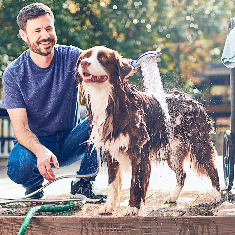 A Waterpik shower attachment that'll make your pup
