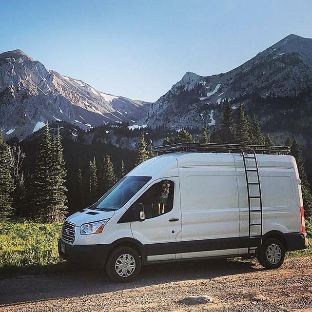 Zorro1676 And Pups Exploring Montana In Their Ford Transit With Aluminess Gear Aluminess Roofrack L Ford Van Ford Transit Roof Rack Ford Transit Camper