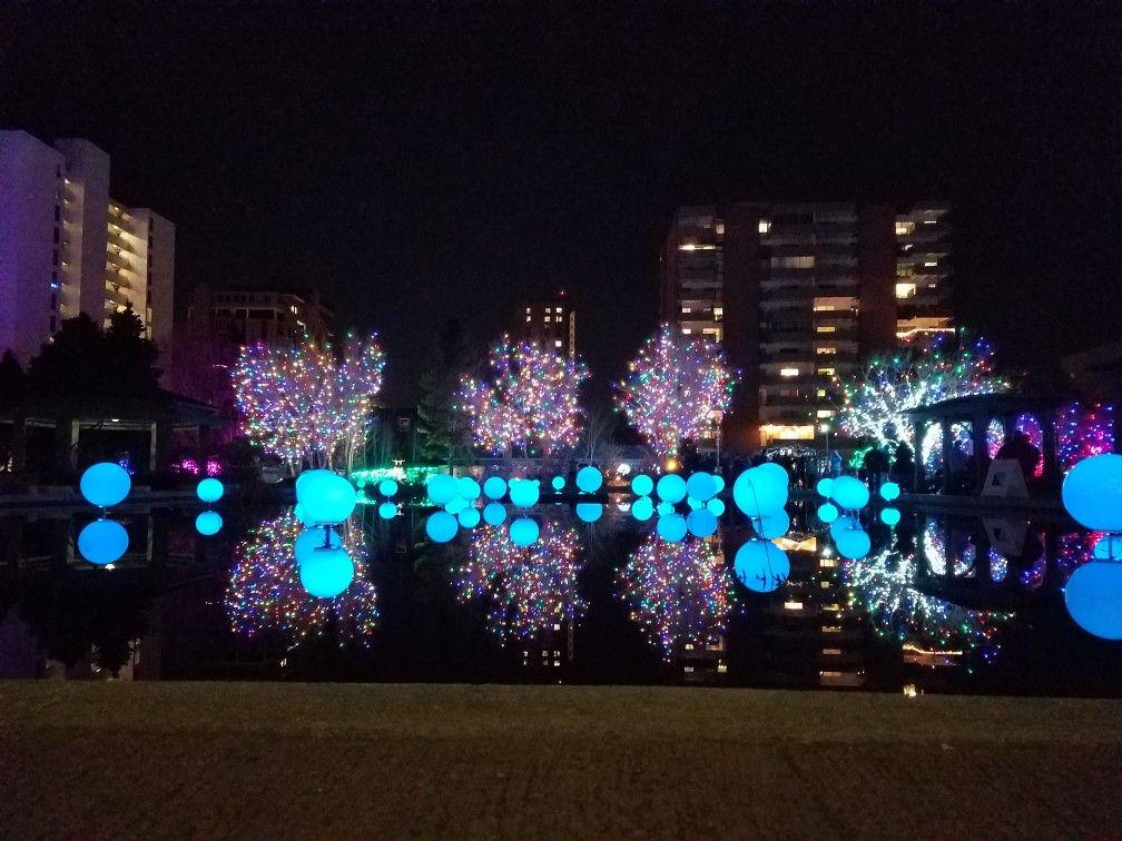 Lights display at Denver Botanic Gardens for their