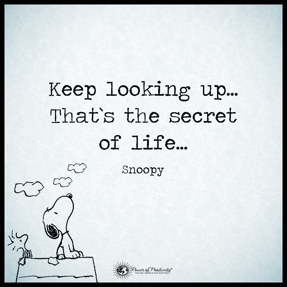 Keep Looking Up That S The Secret Of Life Snoopy Look Up Quotes Inspirational Quotes Up Quotes