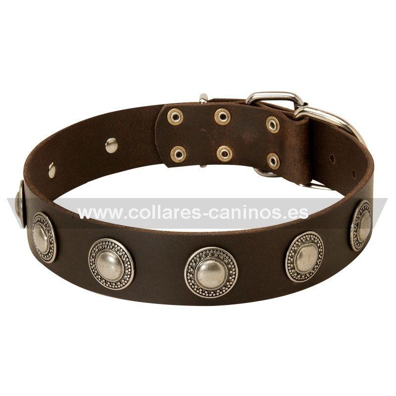 1000+ images about Collares de cuero para perros de todas razas on Pinterest