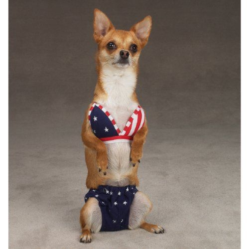 Dog Bathing Suits And Bikinis Pet Costumes Pets Cute Animals