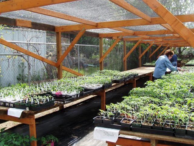 Nine palms master gardeners of santa clara county farm - Master gardeners santa clara county ...