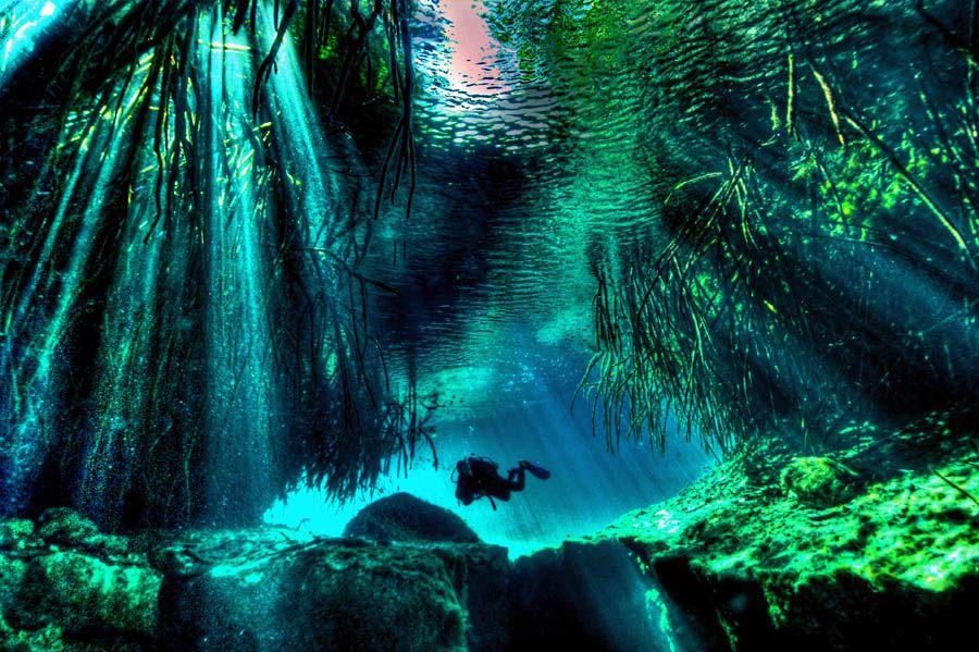 Cenote Manati, Mexico - HDR - ScubaBoard Gallery | Places I
