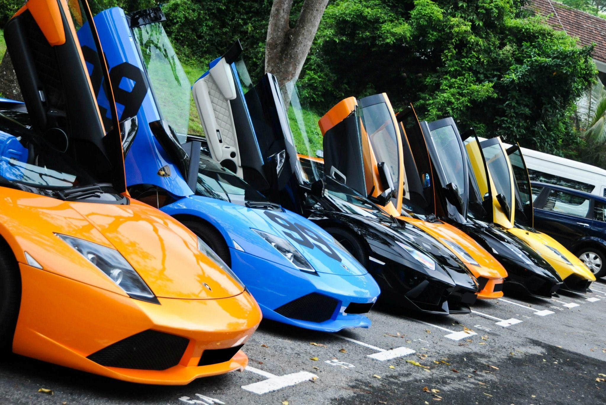 All Lamborghini Doors Open In Up Side In A Row Hd Best Images Bake