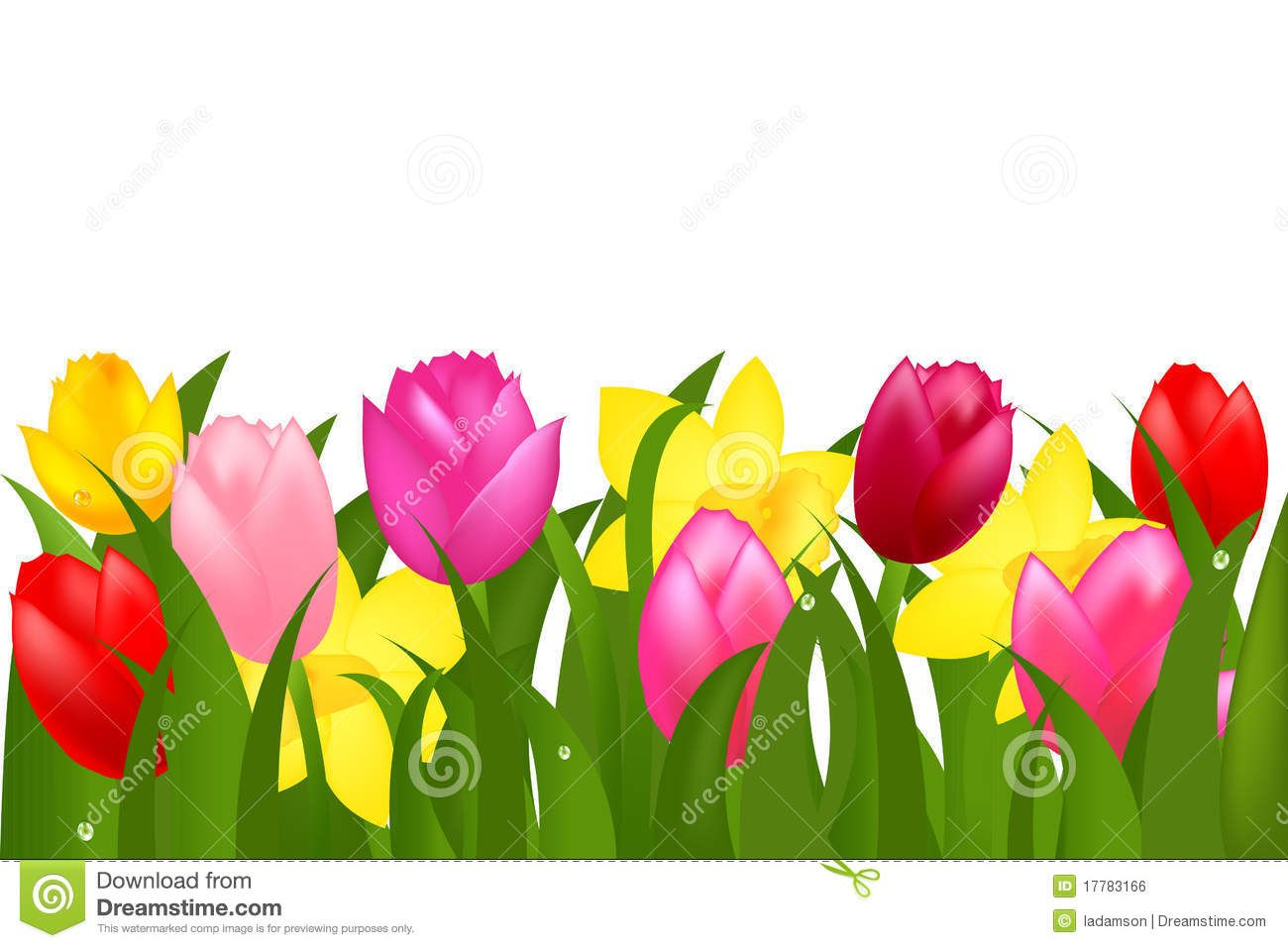 Pink Yellow Spring Tulips Flower Border Stock Photos Images Tulips Flowers Flower Border Spring Tulips