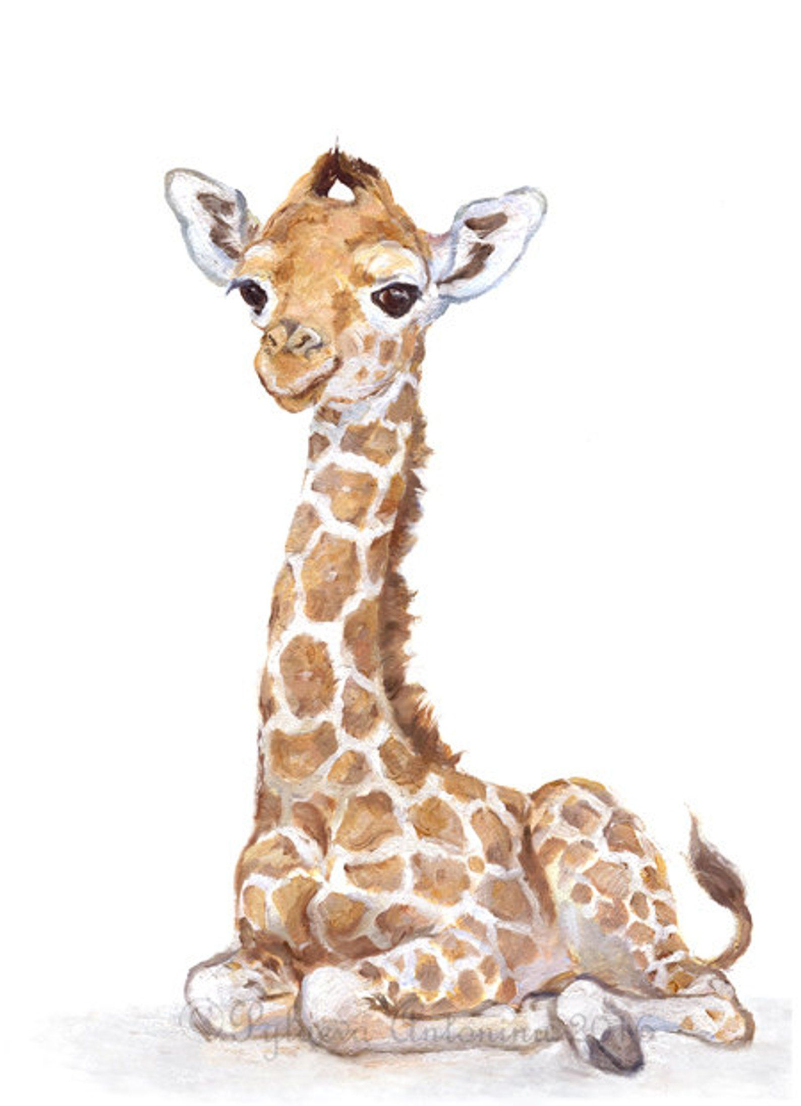 Safari Nursery Art Baby Giraffe