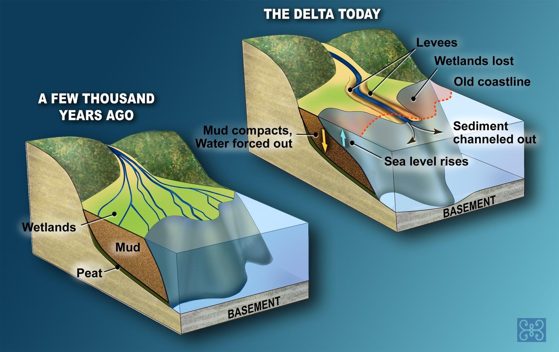 river delta formation - Google Search | Biomimicry: EcoSystems ...