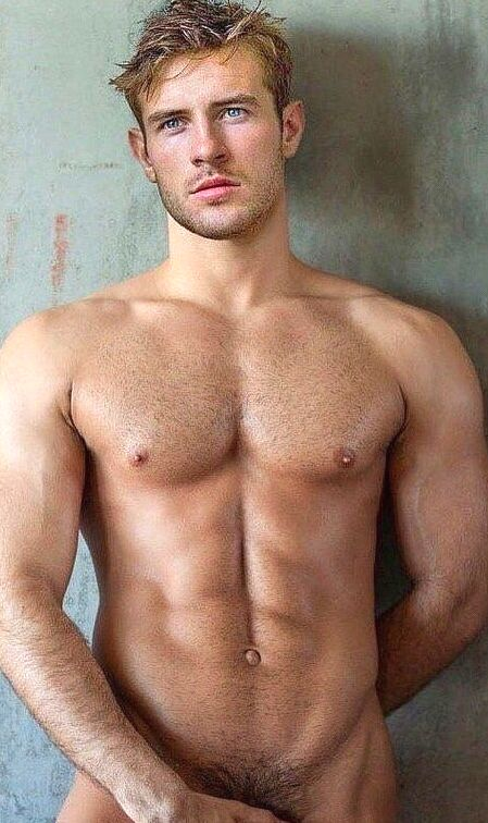 Sixpack gay hairy guys photo