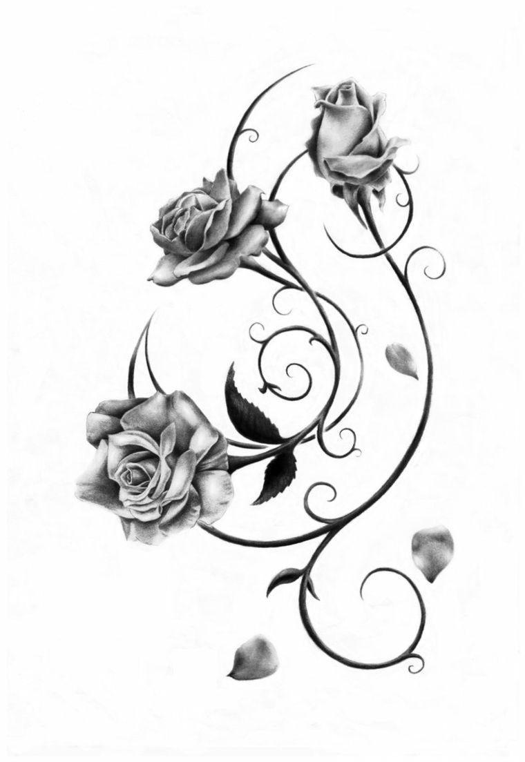Disegno Realizzato A Matita In Bianco E Nero Di Due Rose E Un