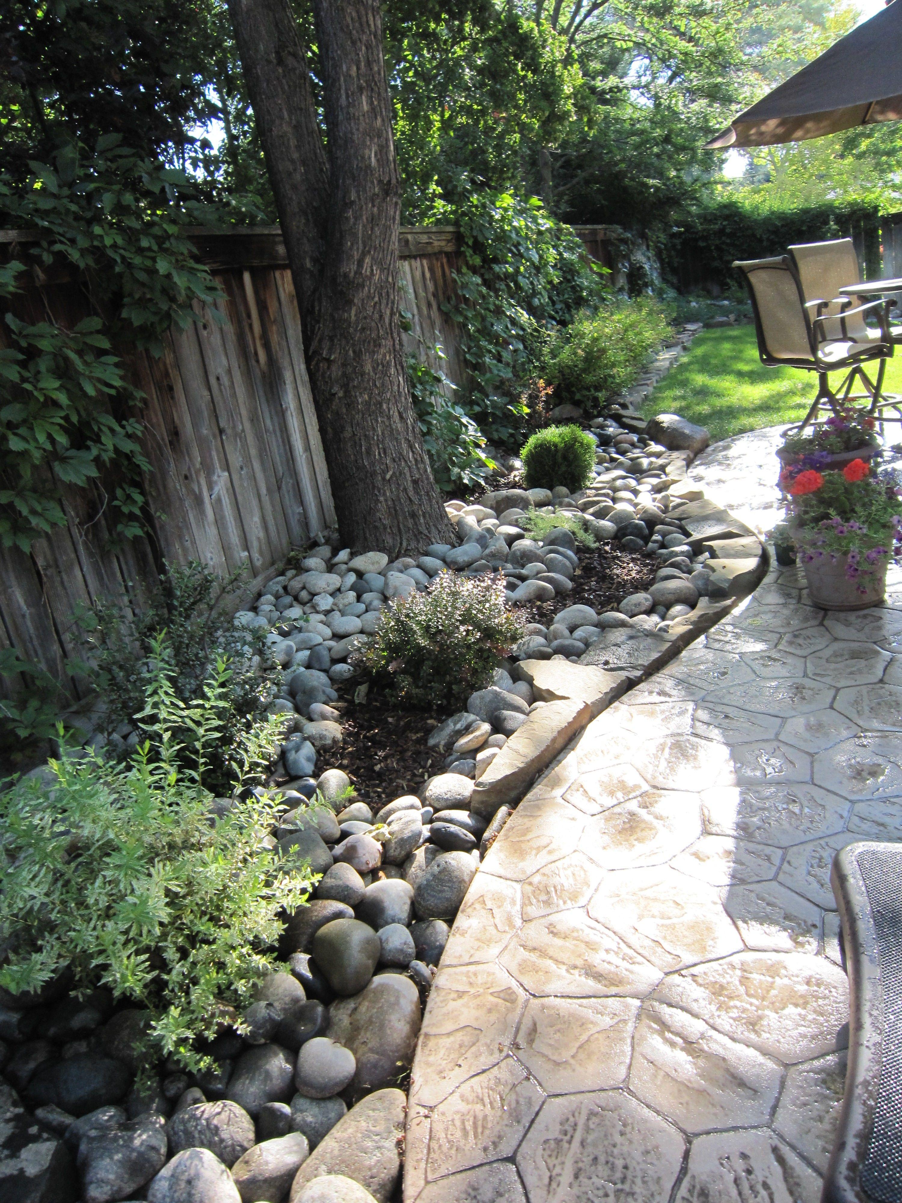 Great idea a grassless side yard idea dripline watering for River rock yard ideas