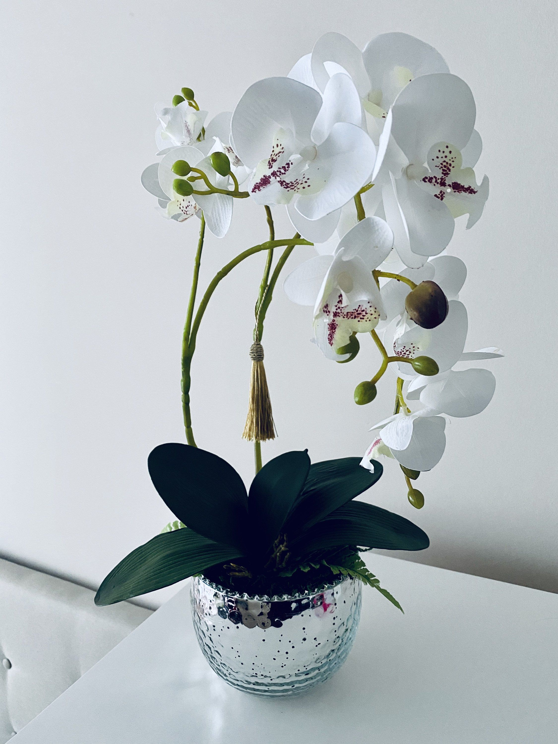 Real Touch Orchid Orchid Composition Orchids In A Mirrored Etsy In 2020 White Orchids Orchids Home Decor