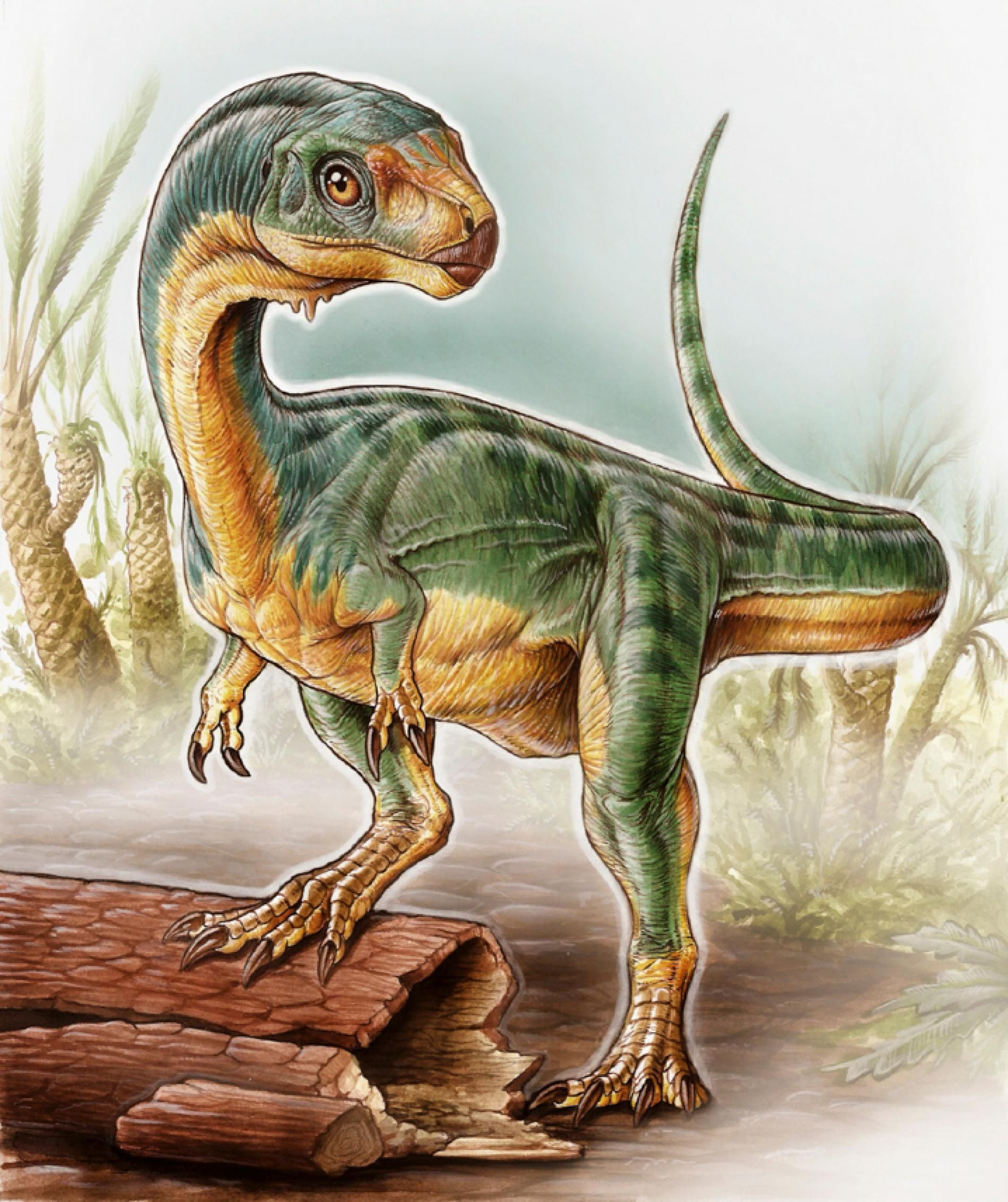 T Rex S Oddball Vegetarian Cousin Discovered