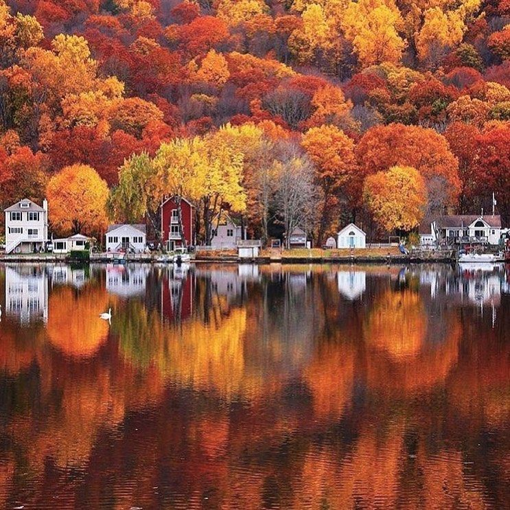Tone On Tone Loi Thai On Instagram Hello From Maine It S Peak Fall Foliage Here In The Midcoast Reg Best Travel Insurance Travel And Tourism Fall Pictures