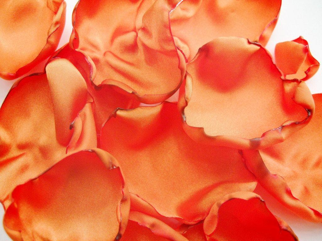 orange flower petals rose petals table decor flower girl petals