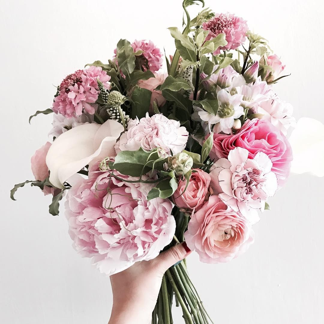 "2,242 Likes, 5 Comments - Florist.jane (@jane.florist) on Instagram: ""오늘 심쿵 #블스꽃다발 . . . . . 클래스 문의 - janejoung310 카카오톡  #bloomingswan #bloomingswanflower #꽃꽂이 #부케…"""