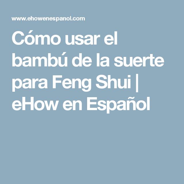 C mo usar el bamb de la suerte para feng shui bamb de for Feng shui para la buena suerte