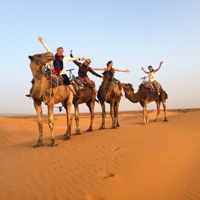#whatagreatday #whatagoodtime #havingfun #girlspower on the #dromadaries in the #desert #desertsunset of #morocco #marokko #sahara #travelingmorocco #traveling #erglyudi #dunesdesjuifs #dunes #dromadaire #mhamid #freedom #essaouira #desertdreams #lovelyplace #laughing