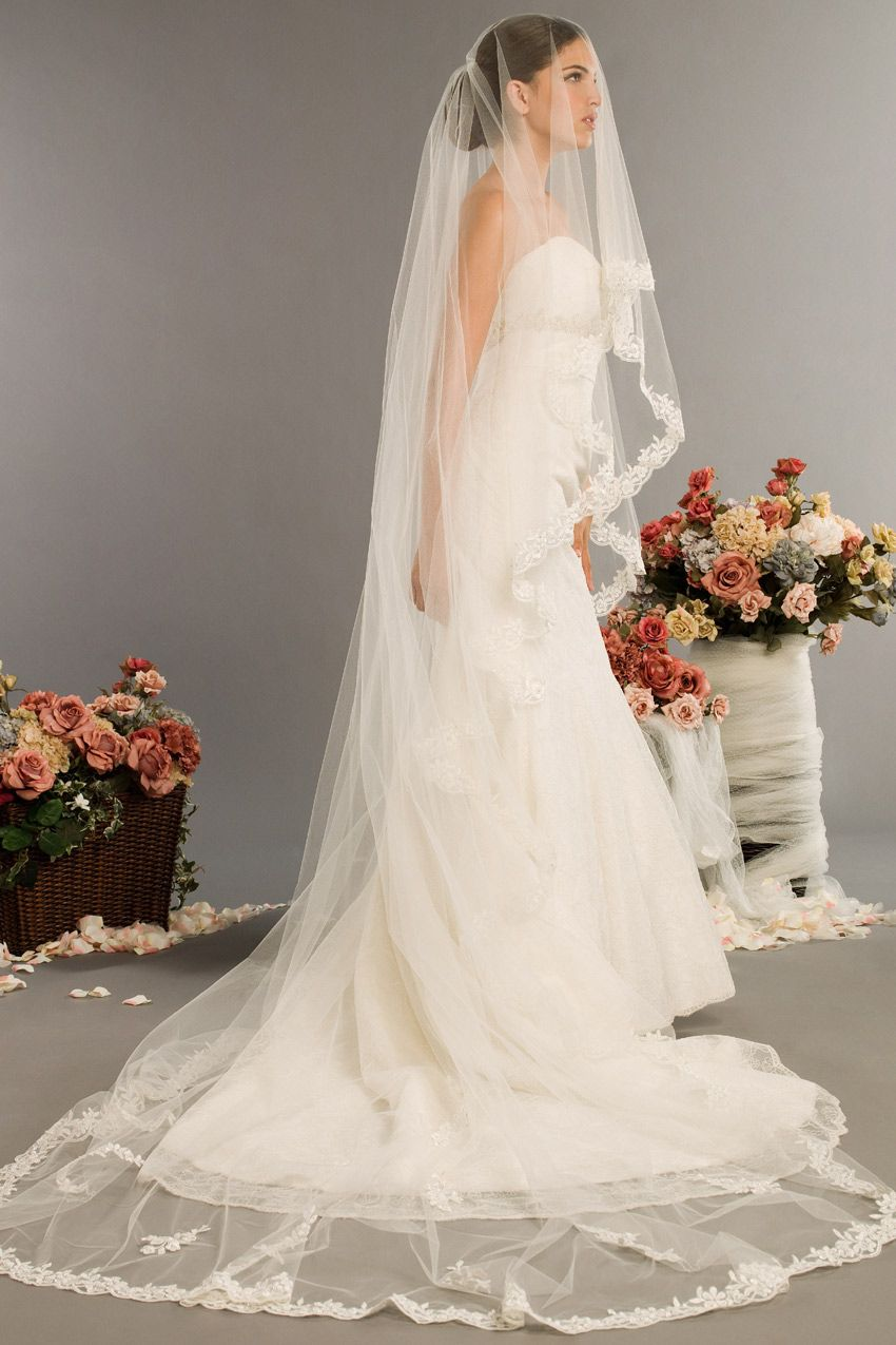 Long veil wedding dresses  Love the veil  Weure Really Getting Married  Pinterest  Veil