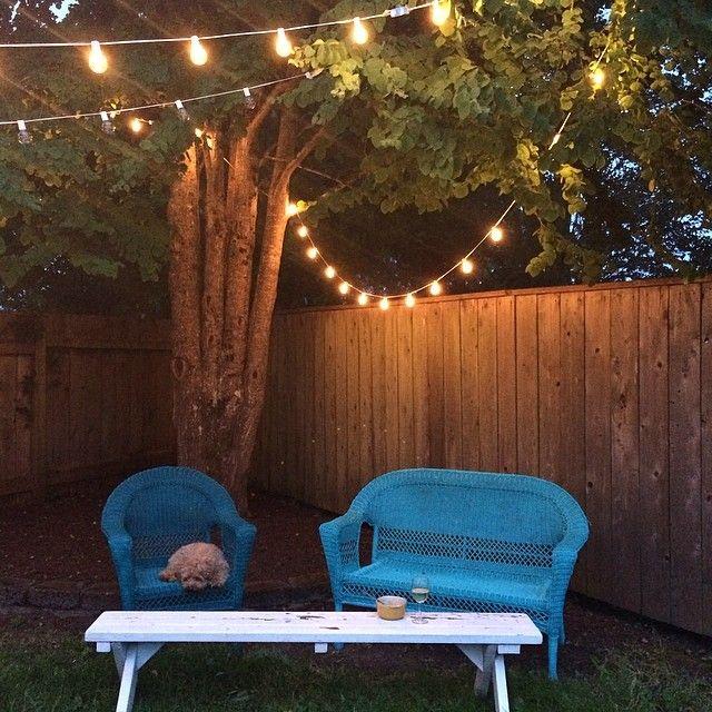 Parenthood Backyard, Patio Lights, Backyard Decor, Spray