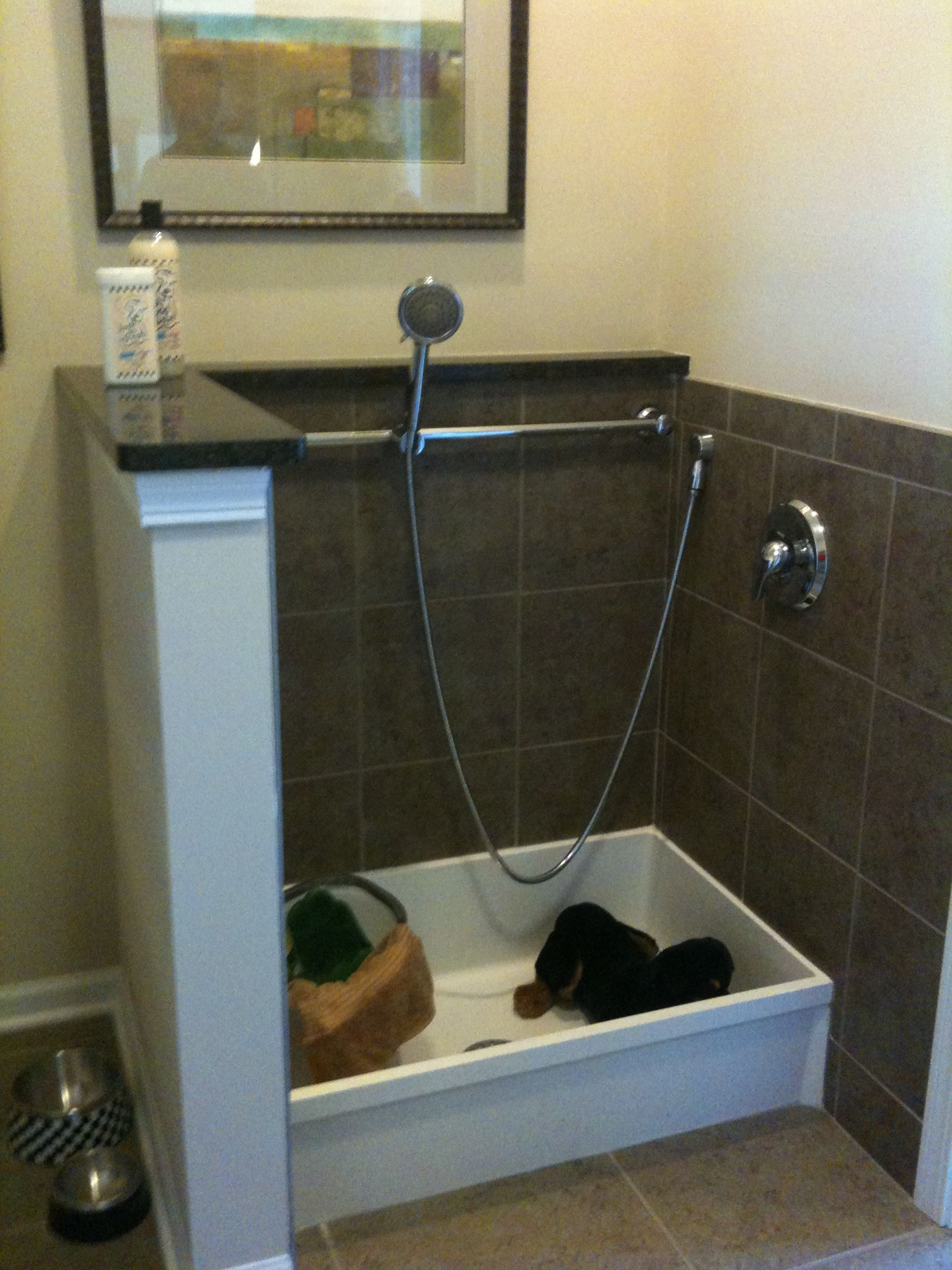 Dog Shower In Laundry Room Utility Sink