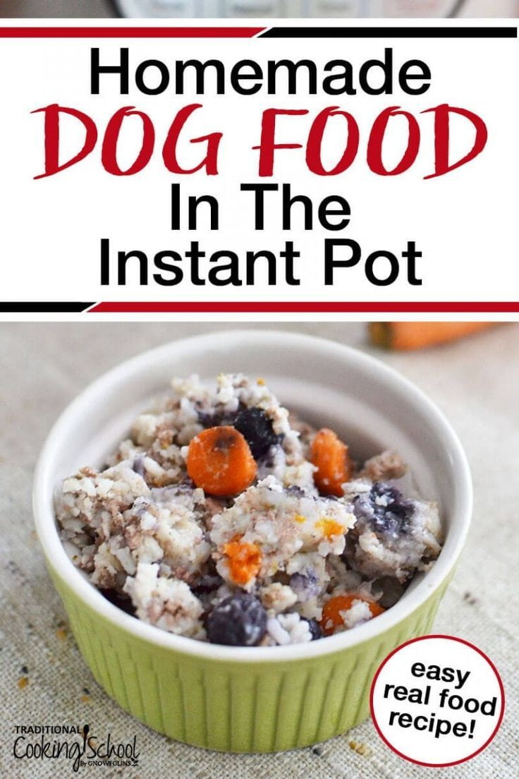 Homemade dog food in the instant pot recipe dog food