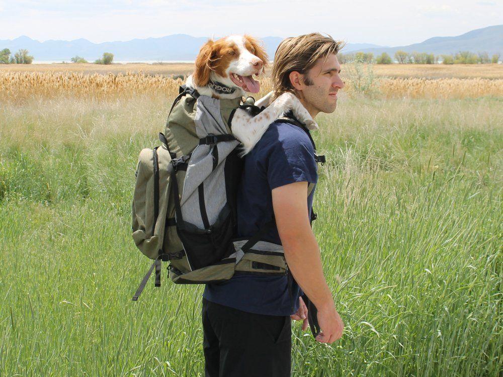 Rover Large Dog Backpack Carrier by K9 Sport Sack® Dog