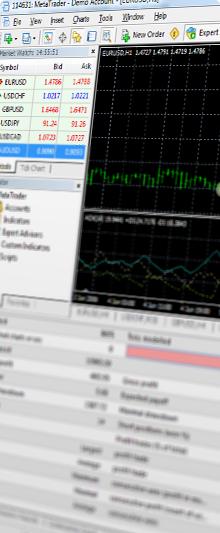 MetaTrader 4 Terminal Trading Software | Biedex