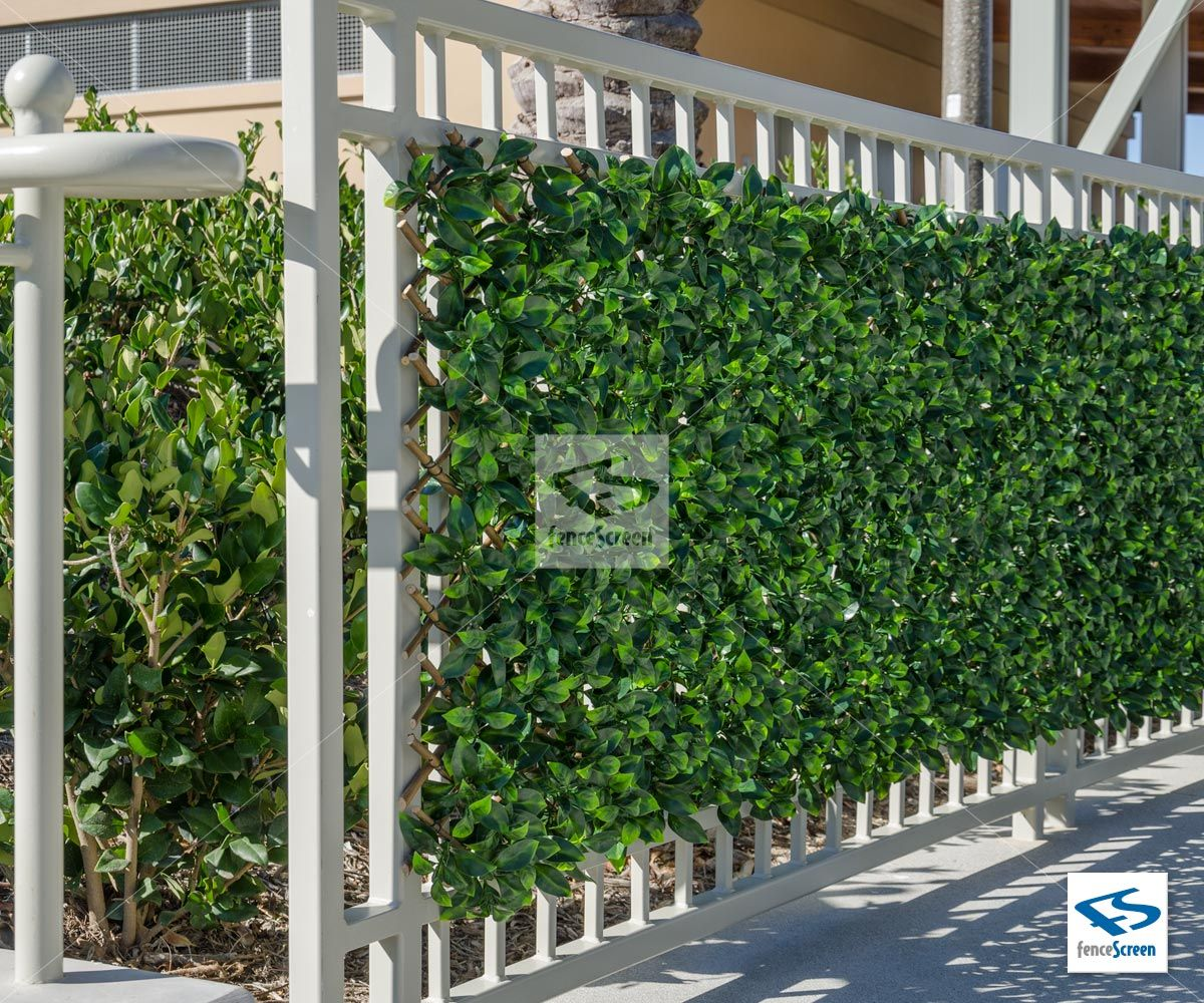 Bunnings Fake Turf Expandable Ivy Trellis Privacy Fence Screen Pool