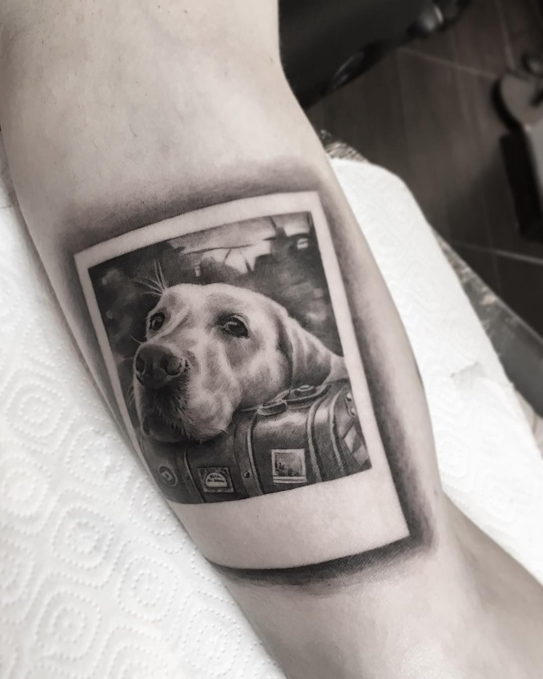 Tattoo Artist Zinaida Pasko Dog Portrait Tattoo Dog Memorial Tattoos Dog Tattoos