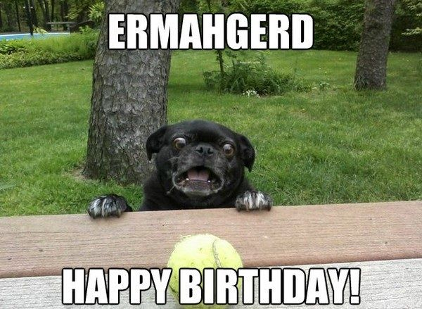 Funny Memes For Your Best Friend : 20 happy birthday memes for your best friend happy birthday memes