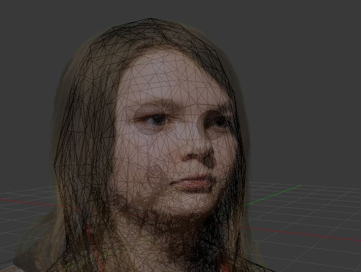 face geometry