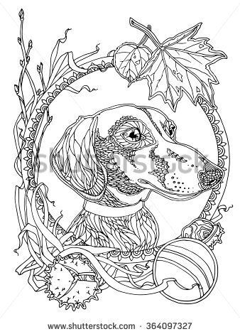 Dachshund With Autumn Elements Coloring Page For Adults Antistress Coloring Dog Coloring Page Animal Coloring Pages Dog Coloring Book
