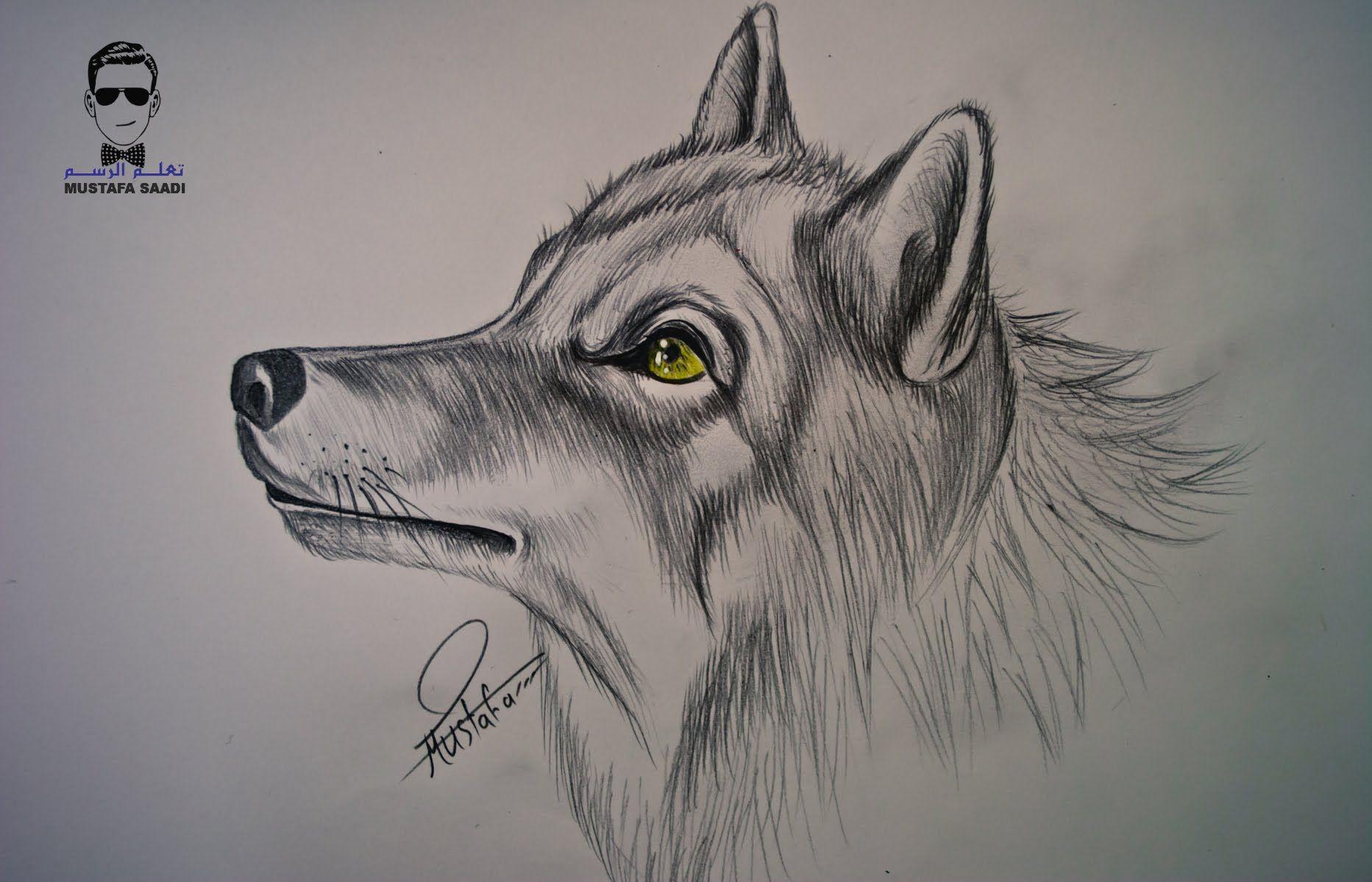 تعلم كيفية رسم كلب بالرصاص مع الخطوات للمبتدئين Animal Drawings Animal Art Sketches