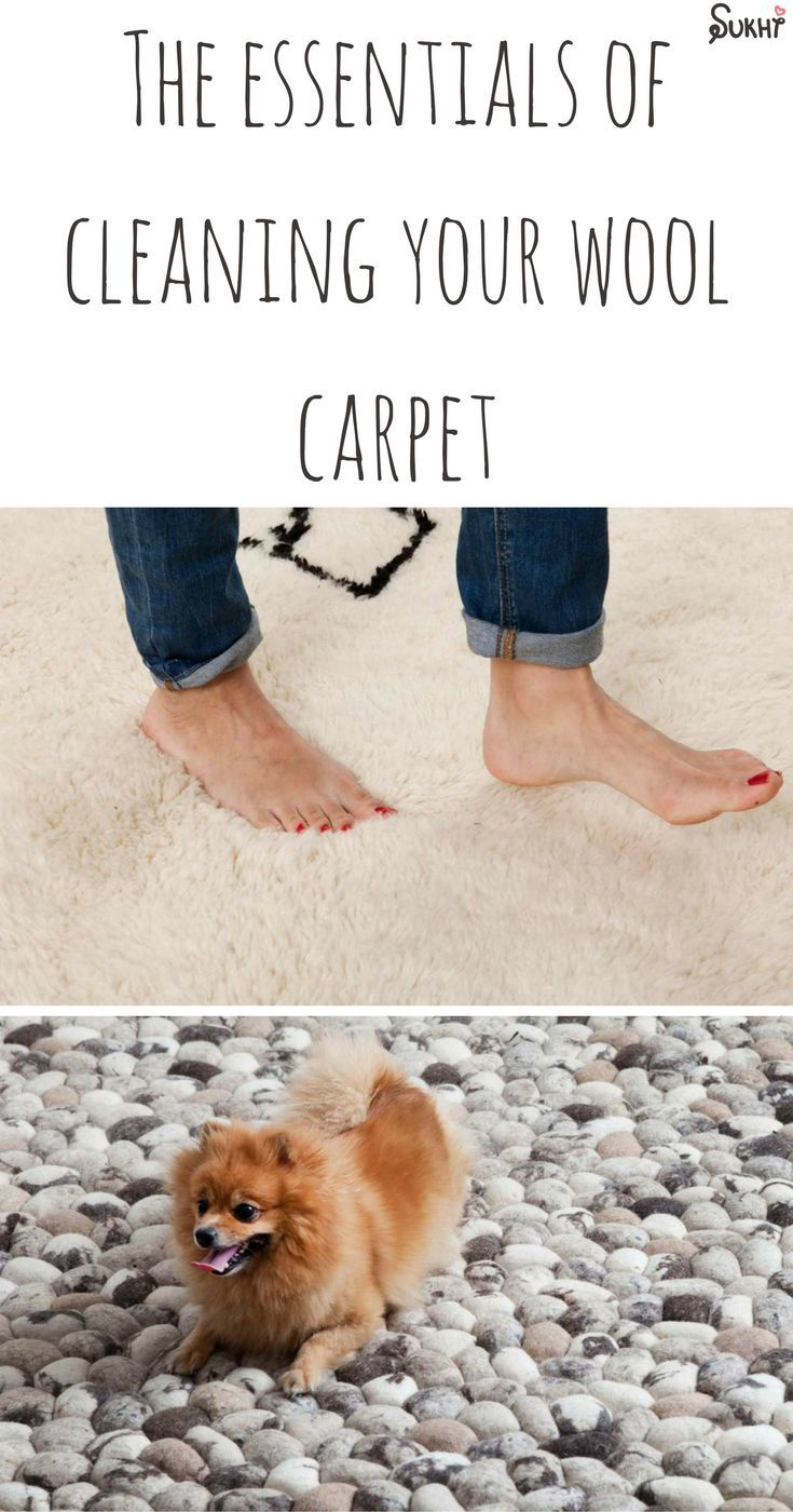 The essentials of cleaning your wool carpet all you ever