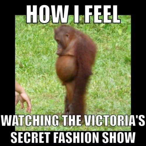 9c46f8dd28aef800769a28812abb35da motivation how i feel victoria's secret meme recipes pinterest