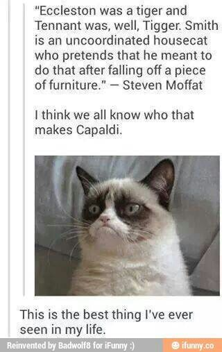 doctor who grumpy cat - Google Search | Doctor Who | Pinterest