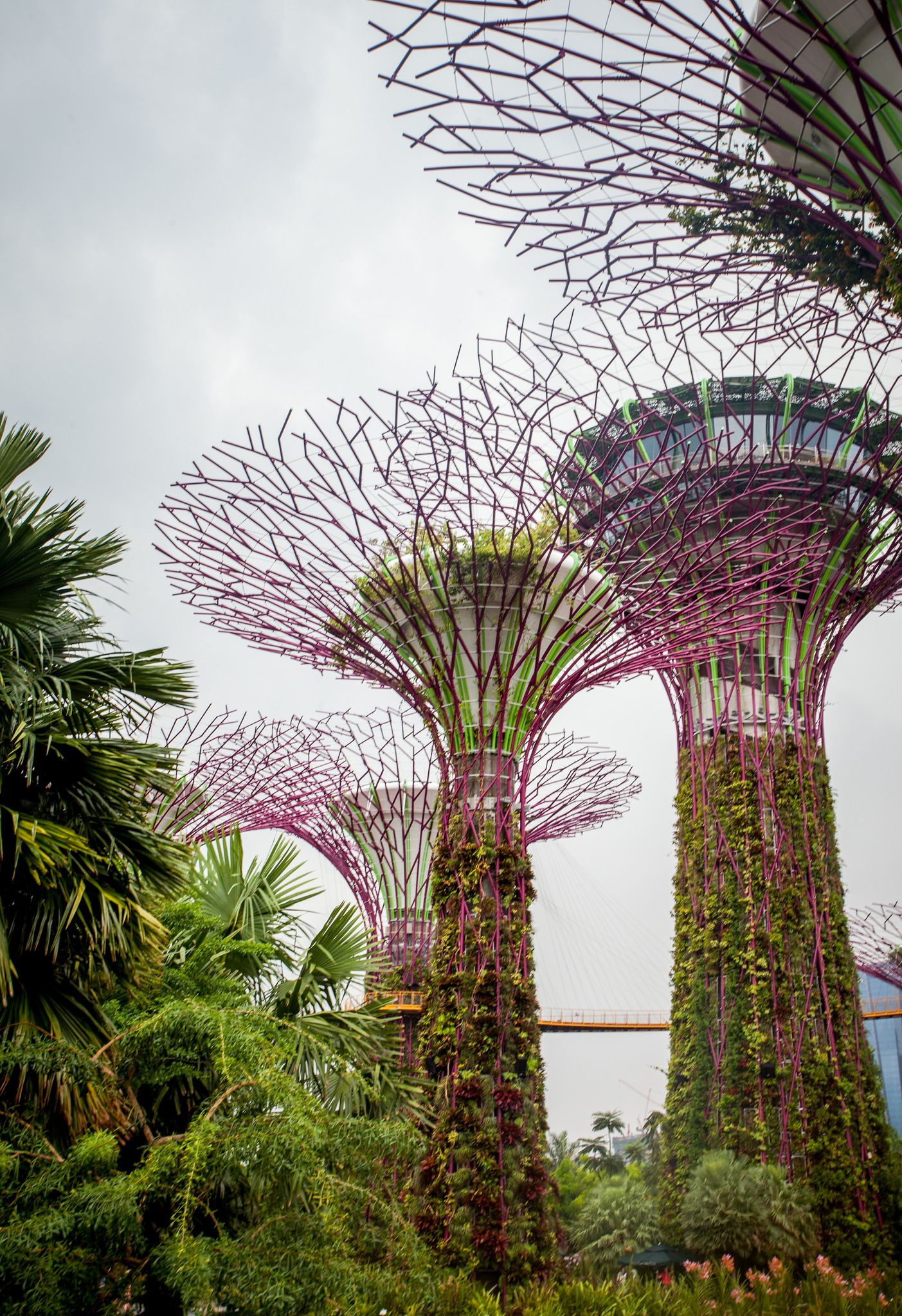 Gardens By The Bay In Singapore Gardens By The Bay Michael In The Bathroom Bathroom Design Luxury