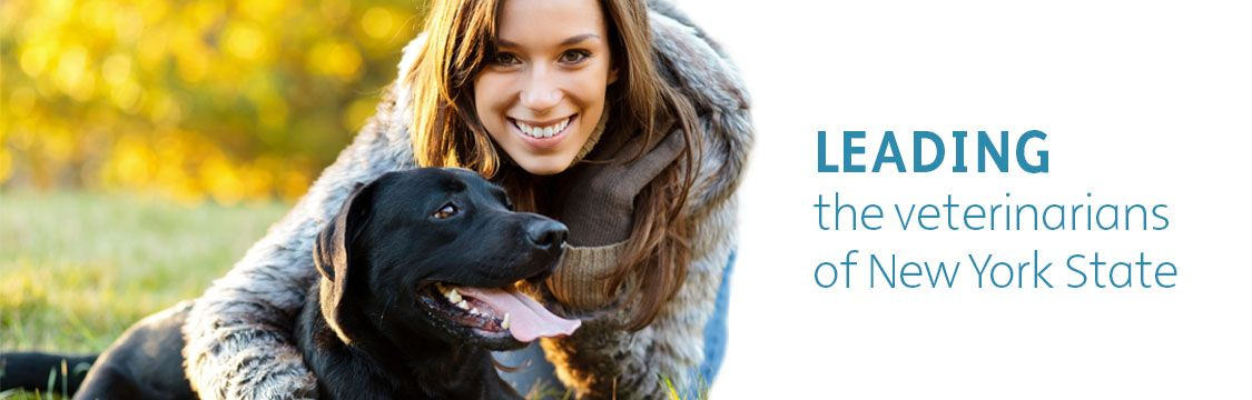 New York State Veterinary Medical Society Veterinary Veterinarian Education Gps Tracking Device