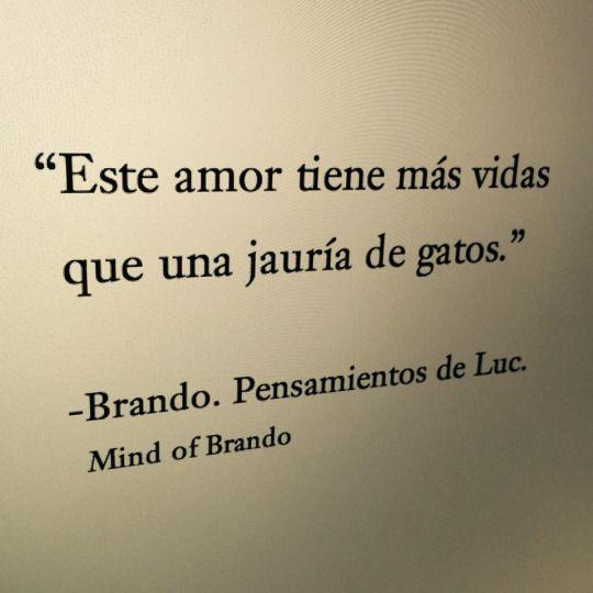Mi Mundo, Poeta.