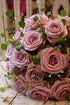 http://anemoneblomster.blogspot.com/2011/02/juleroser-mens-vi-venter-pa-varen.html