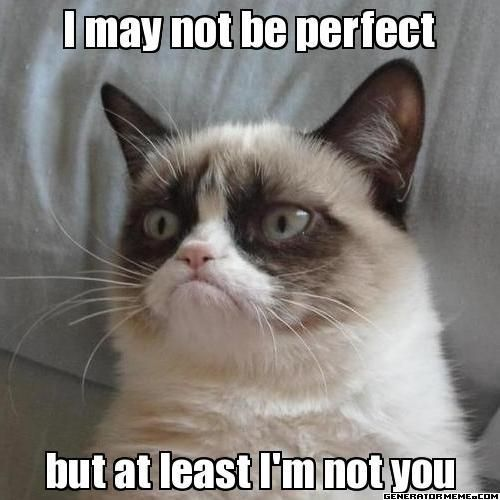 A Collection Of Grumpy Cats Best Memes Grumpy Cat Humor Grumpy Cat Quotes Grumpy Cat Meme