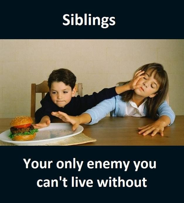 Siblings Siblings Funny Quotes Brother Quotes Funny Sister Quotes Funny