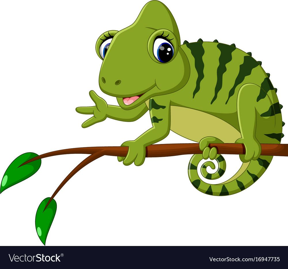 Illustration Of Cartoon Cute Chameleon Download A Free Preview Or High Quality Adobe Illustrator Ai Eps Pdf And High R Animal Clipart Cartoon Animal Outline