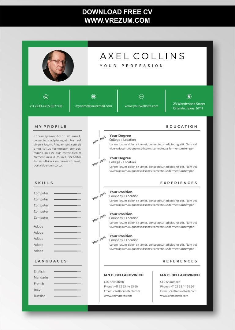 (EDITABLE) - FREE CV Templates For Business Development Manager in 2020 | Cv template free, Cv ...