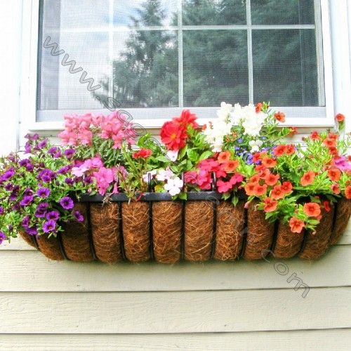 I Just Received This Gorgeous French Black Wrought Iron Window Box With Coco Liner As A Gift It S Underneath Front Overlooking The Driveway Of My
