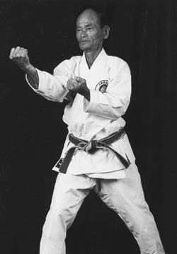 Tehnik Dasar Karate : tehnik, dasar, karate, Seikichi, Kempo, Karate,, Martial, Arts,