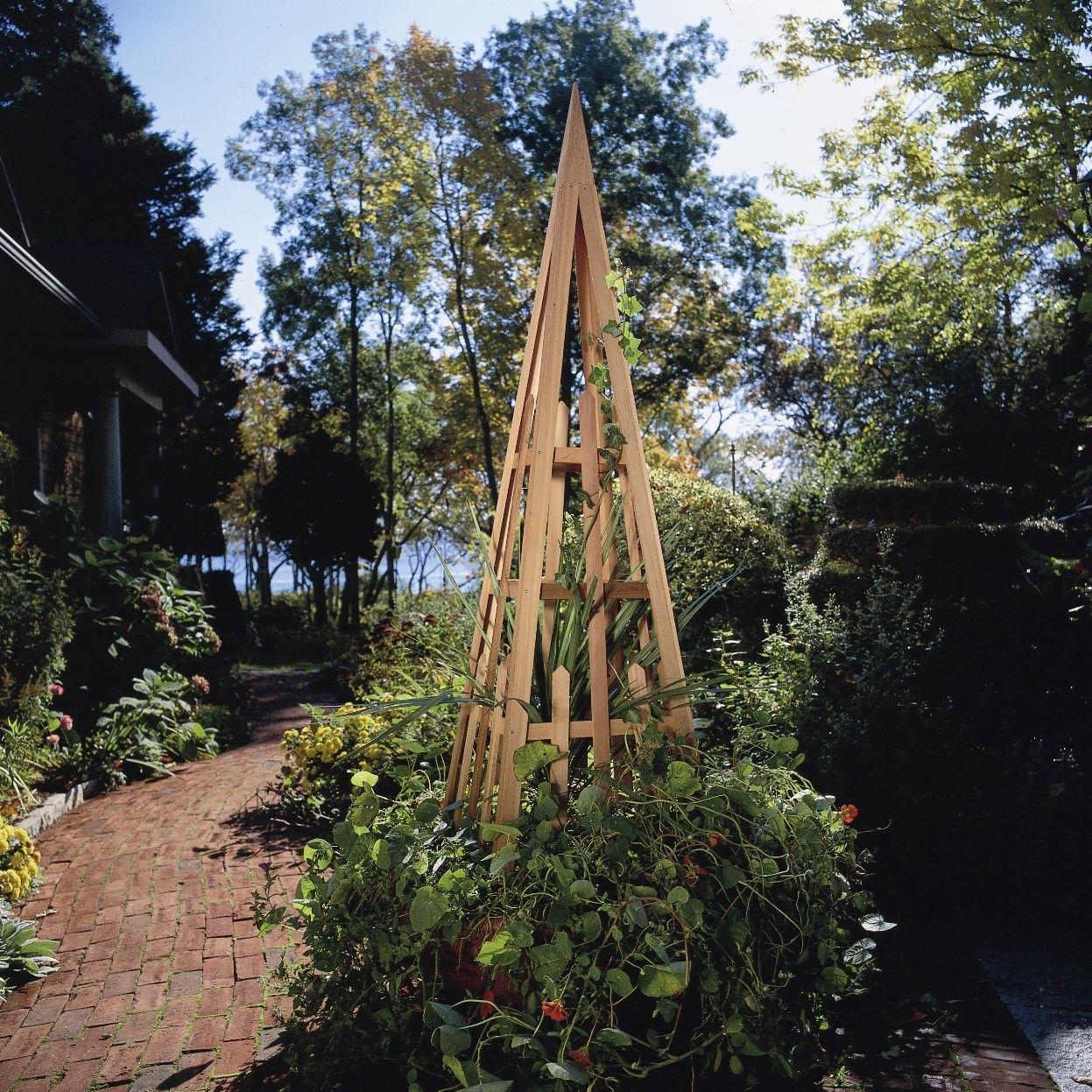 Steel Obelisk Trellis Obelisk trellis, Cedar garden