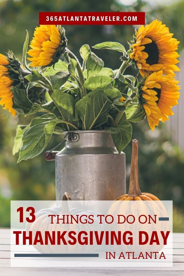 13 Things To Do On Thanksgiving Day In Atlanta Beyond Shopping In 2020 Things To Do Thanksgiving Day Family Vacation Planning