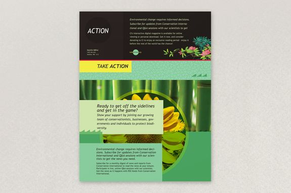 Bright Environmental NonProfit Flyer Template  This Colorful And